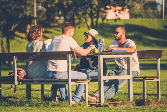 Multi-ethnic group of friends chatting in a park