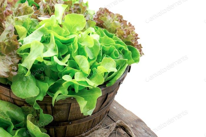 Gemüse auf Korb mit isoliertem Hintergrund