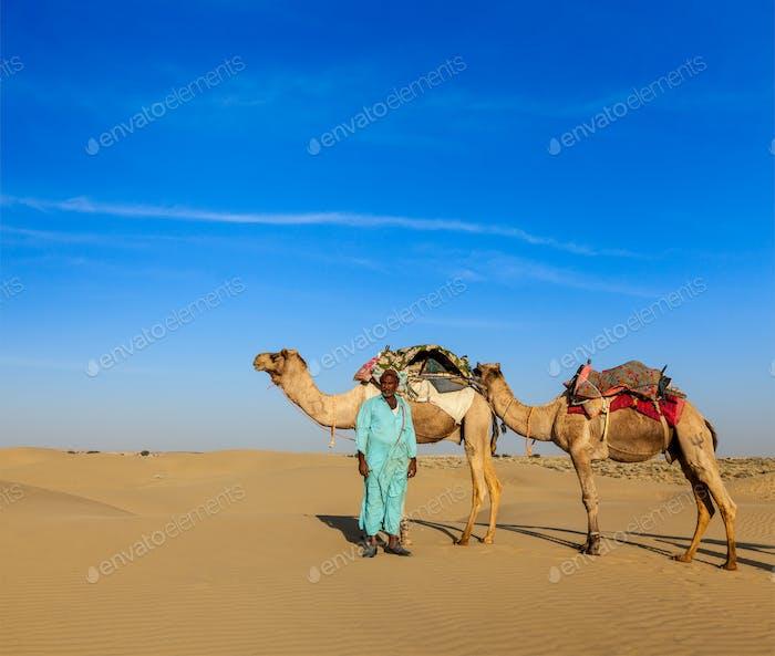 Kameleer (Kamelfahrer) Kamele in Rajasthan, Indien