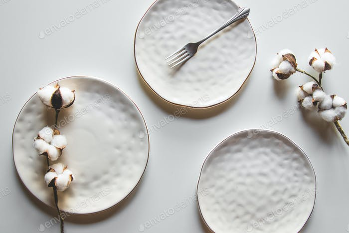 Beautiful plates on a white background with cotton. Beautiful layout