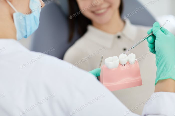 Dentist Pointing at Tooth Model Closeup