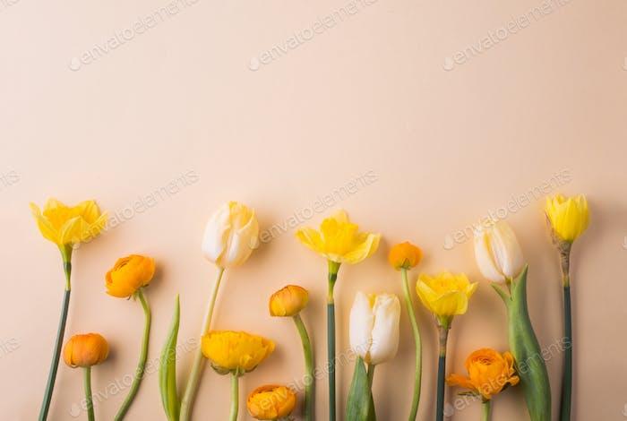Ostern und Frühling flach lag auf einem cremefarbenen Hintergrund.