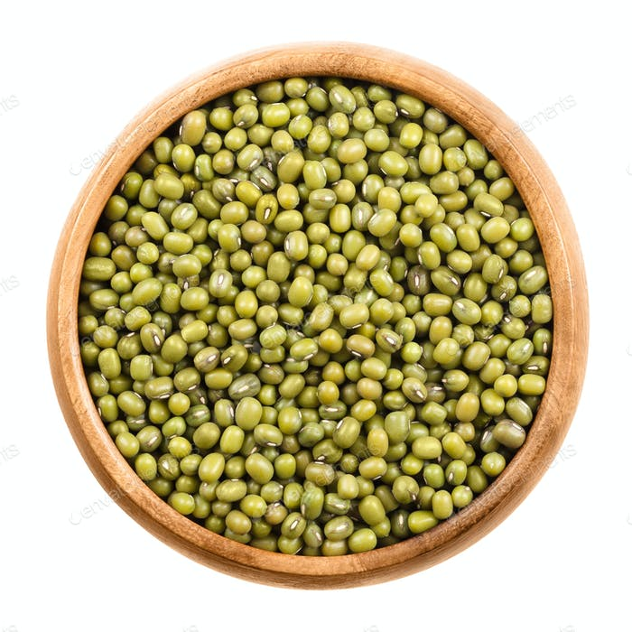 Mung beans in a wooden bowl on white background