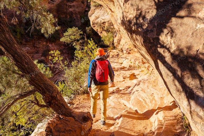 Wanderung in Zion