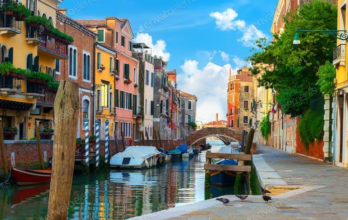 Bunte Häuser von Venedig