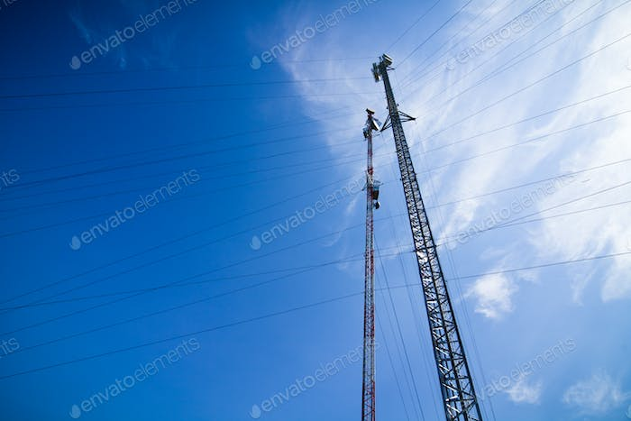Pole with electrical wires