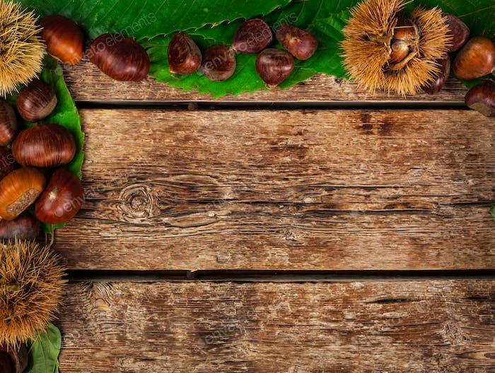 Frame of chestnuts, leaves and chestnut bur.
