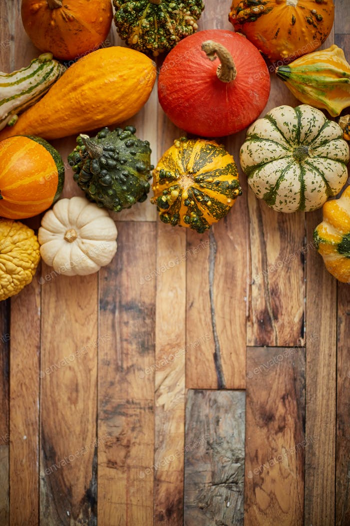 Autumn background. Small multi colored pumpkins on a wooden table. Top view, with copy space