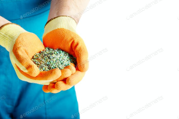 Farmer shows fertilizers in his hands wear in gloves