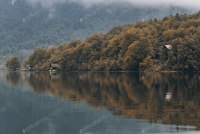 Coniferous trees at autumn over lake