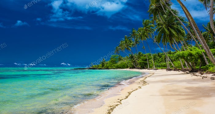 Tropical beach on south side of Upolu, Samoa Island with palm tr