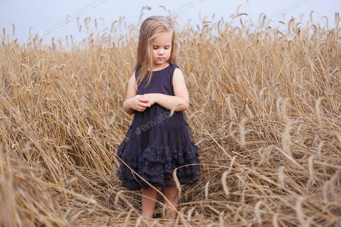 Beautiful little girl in ripe rye field staying in black dress