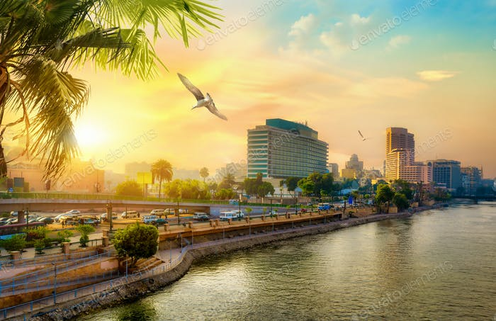 View of modern Cairo