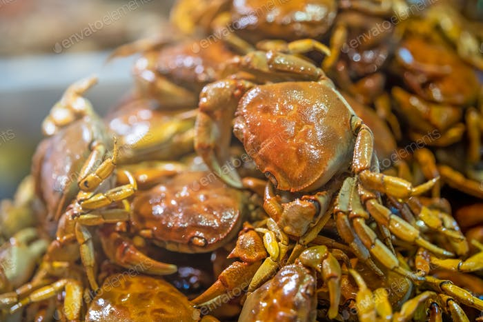 Selective focus shot of crispy delicious cooked small crabs served together in a plate