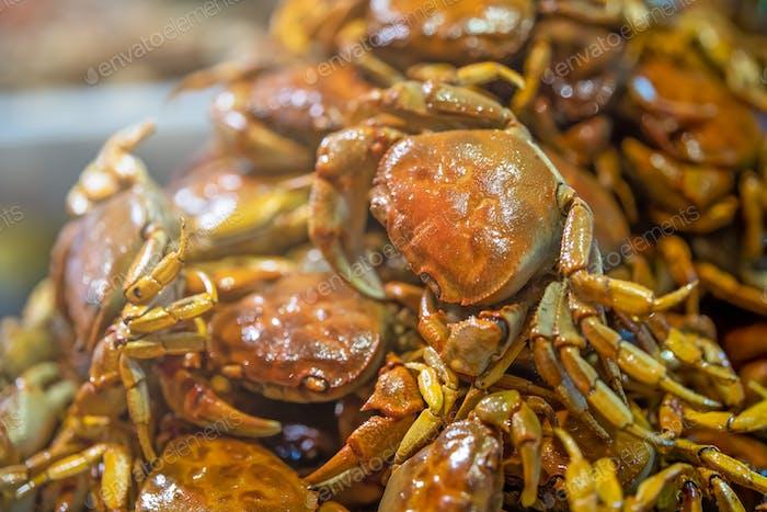 Selektive Fokusaufnahme von knusprigen leckeren gekochten kleinen Krabben zusammen in einem Teller serviert