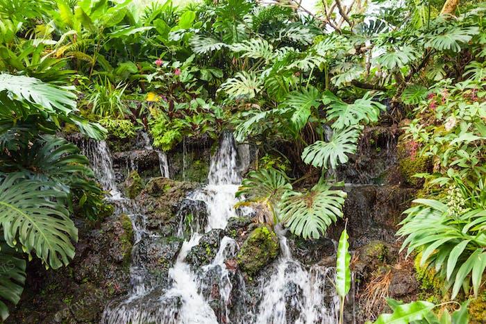Mini Waterfall in Singapore