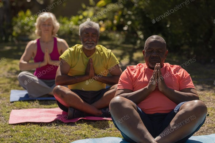 Front view of active senior people performing yoga on yoga mat in the park