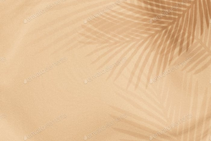 Palm leaves shadow on a beige background