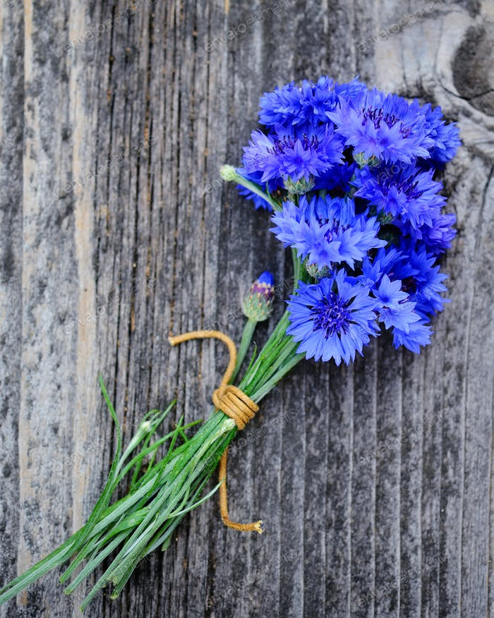 Cornflower blue flowers (Centaurea cyanus) on an old wooden tabl