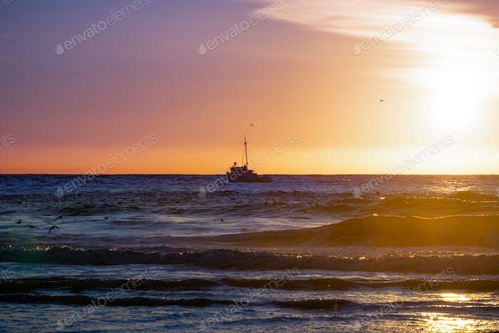 Ship heading to the harbor, at sunset, Moss Landing, California