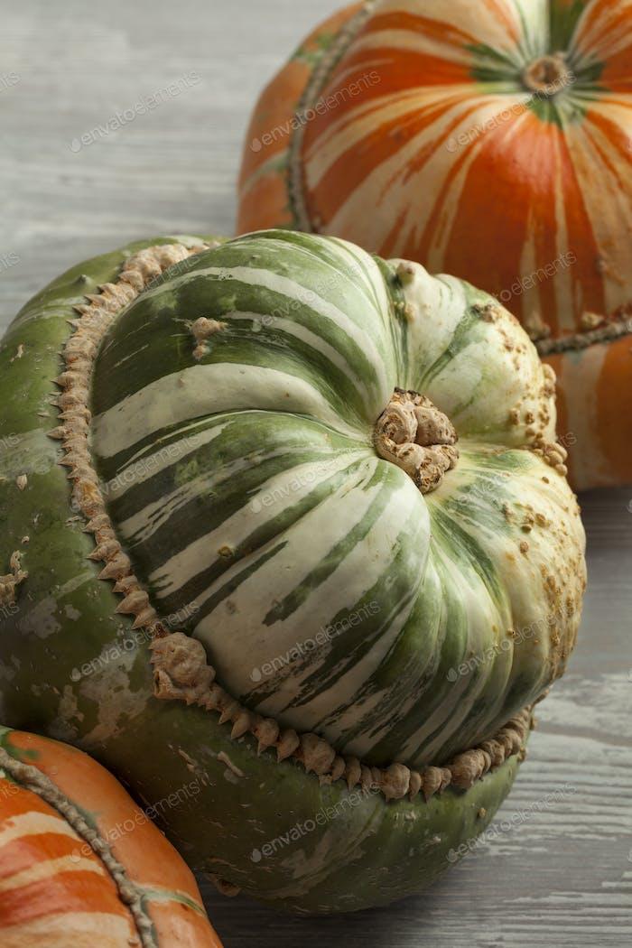 Fresh orange and green Turban squashes
