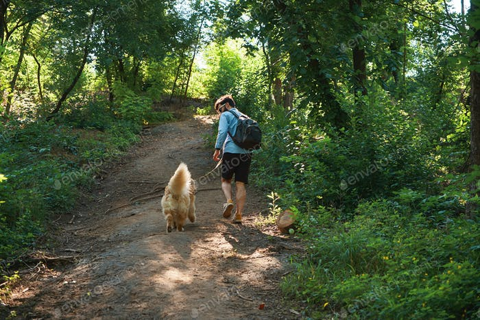 Man hiker walking up on a footpath in the forest with his dog on
