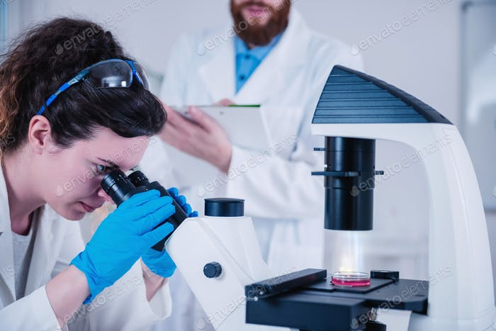 Young Woman Scientist With Microscope In Laboratory