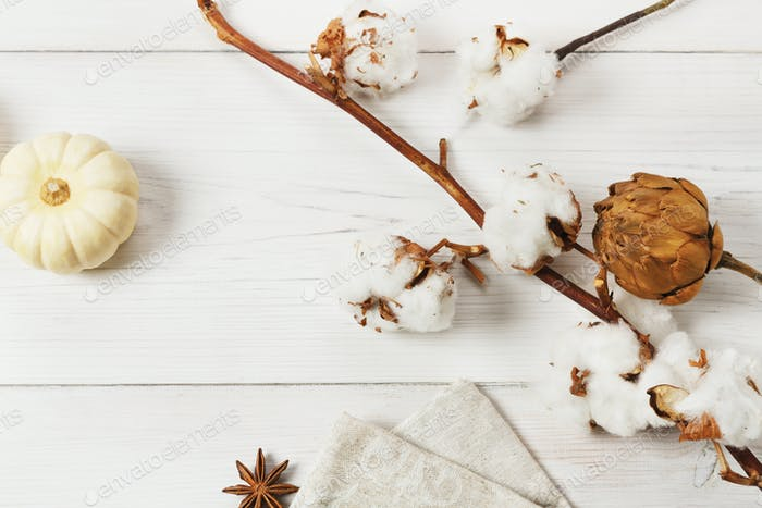 Autumn dried flowers and pumpkin on white wood, background