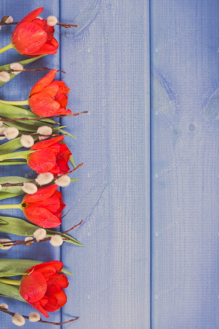 Vintage photo, Red tulips and Easter catkins, festive decoration, copy space for text