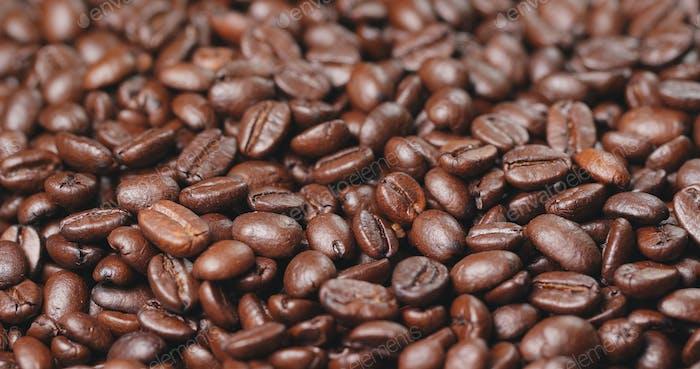 Coffee bean in brown colour