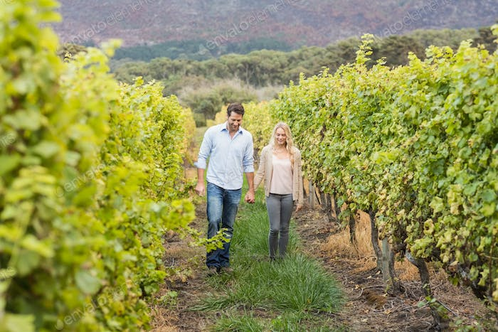 Young happy couple walking side by side while holding hands in the grape fields