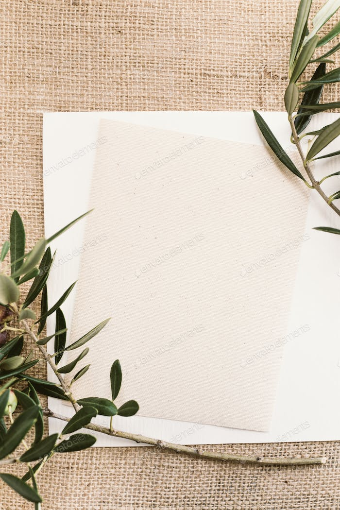 Blank paper and olive branches