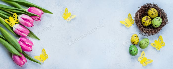Easter Banner Background. Easter Eggs in Nest and pink tulips on Blue Stone Table Background.