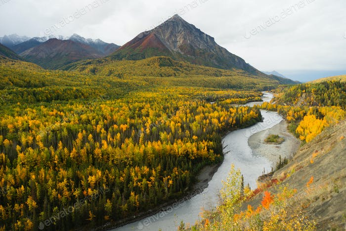 Matanuska River Flows utumn Season Fall Color Alaska