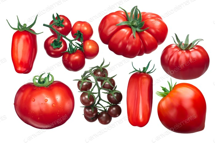 Italian tomatoes, different varieties, paths