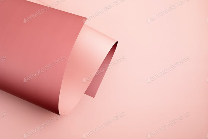 Abstract backgroud of rolled textured paper sheet of different shades of pink