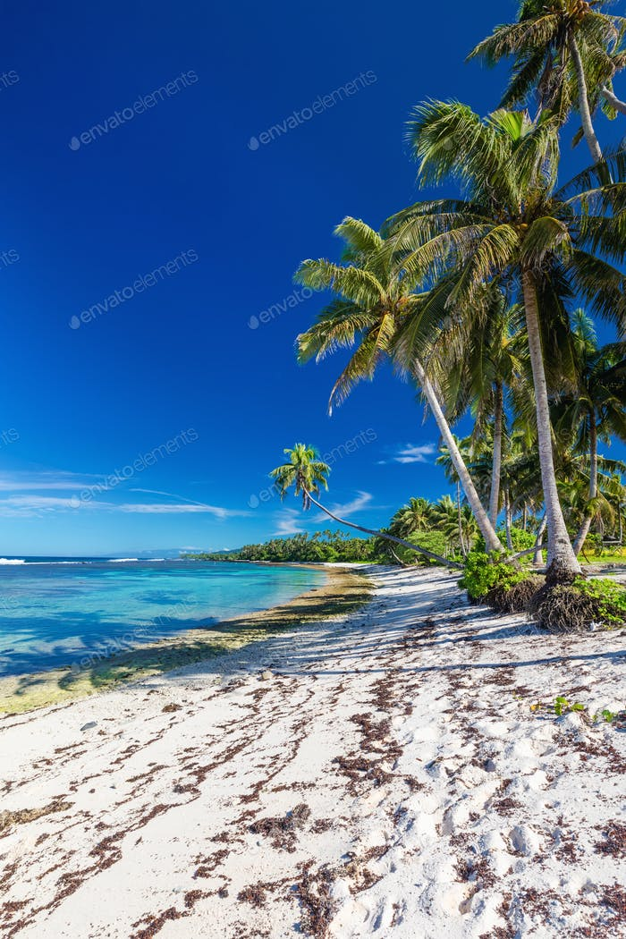 Amazing deserted tropical beach on south side of Samoa Island wi
