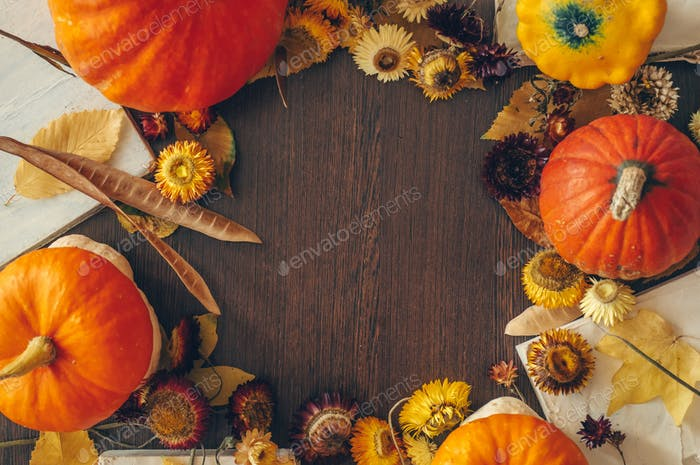 Thanksgiving background with autumn dried flowers