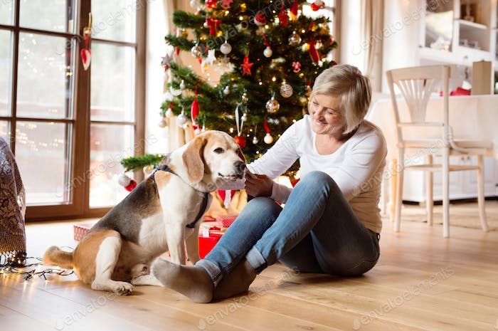 Senior woman with her dog at Christmas tree.