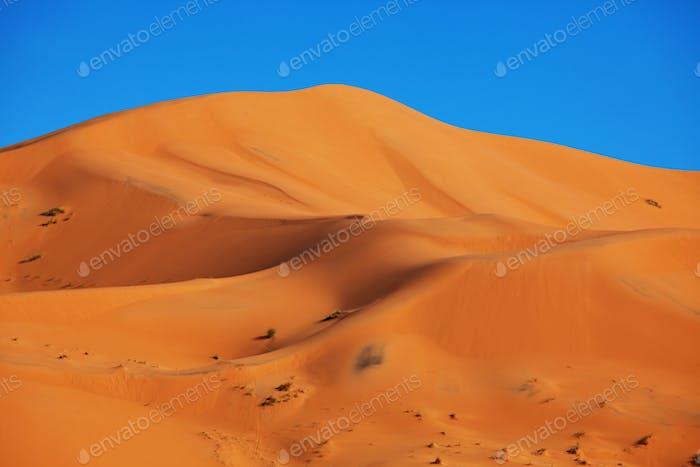 Sandwüste