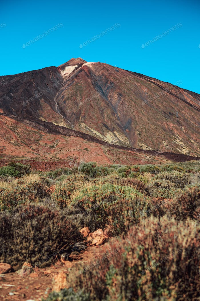 View of Teide mountain from its base