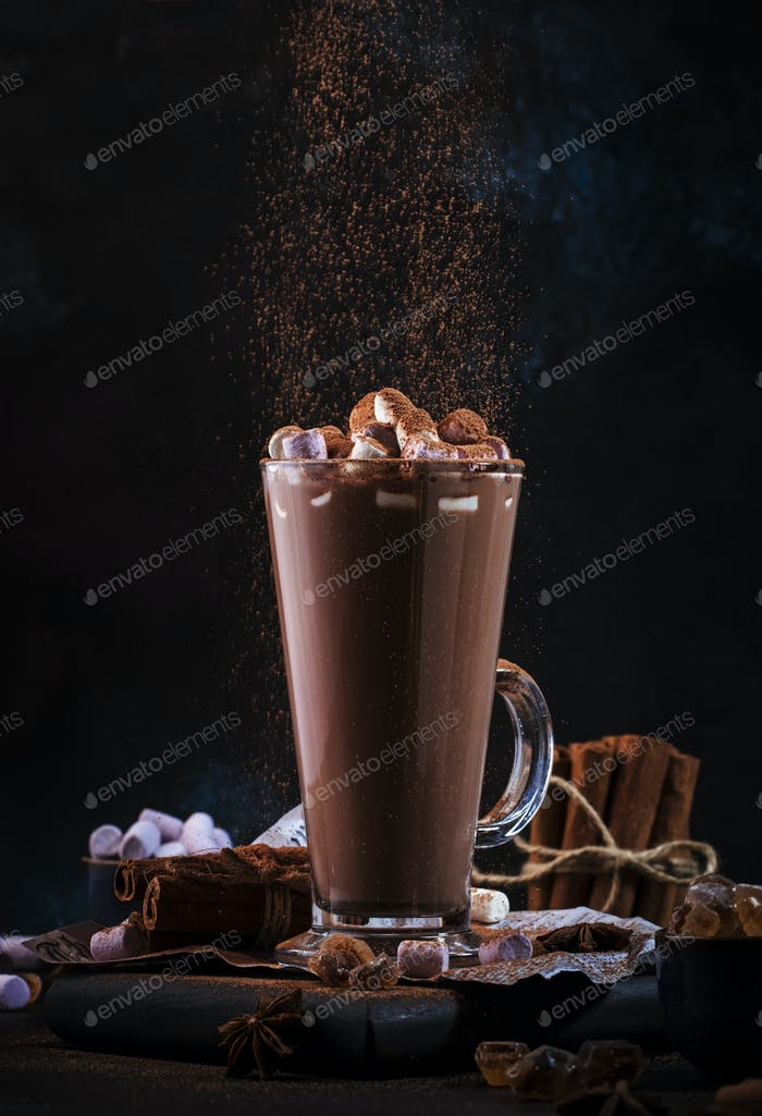 hot chocolate cocoa drink sprinkled with cocoa powder