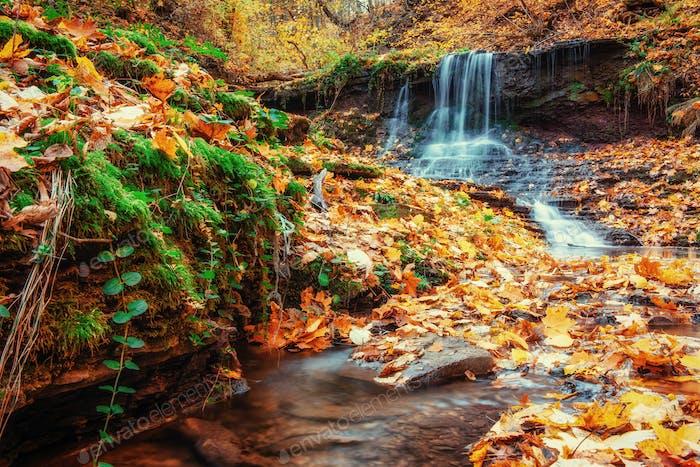 Waterfall in autumn sunlight. Beauty world. Carpathians Ukraine Europe