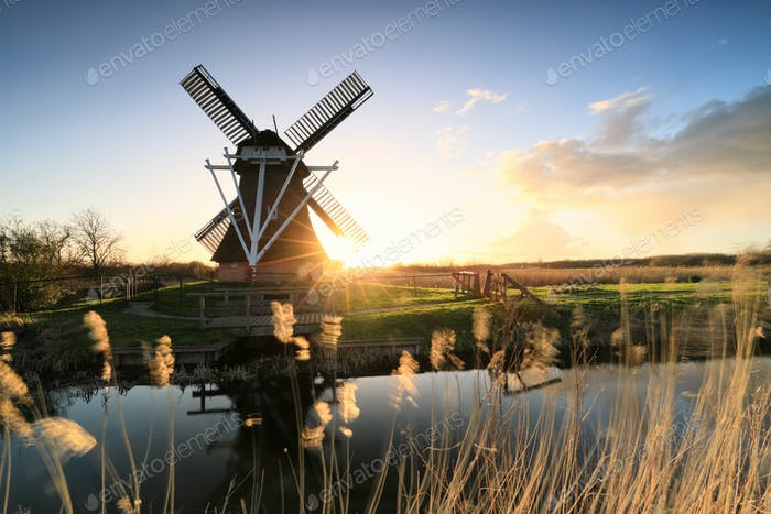 golden sunshine behind windmill by river