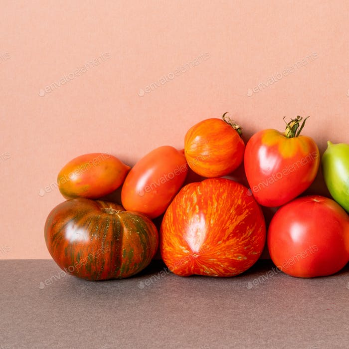 Organic tomato vegetables on pink wall background