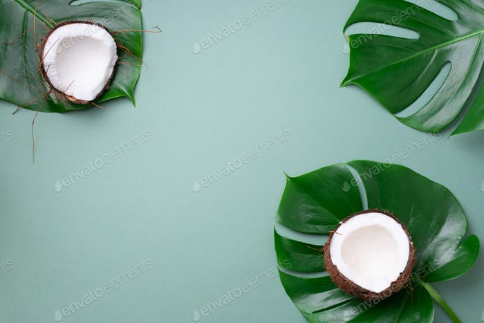 Fresh ripe coconuts, tropical palm and monstera leaves on green background with copy space. Top view
