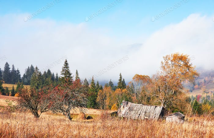 Sunrise above the high mountain foggy valley with old wooden houses on a hill in a mountain forest