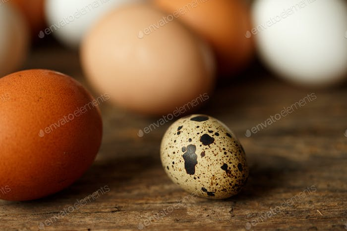 Chicken and quail eggs on a wooden rustic background