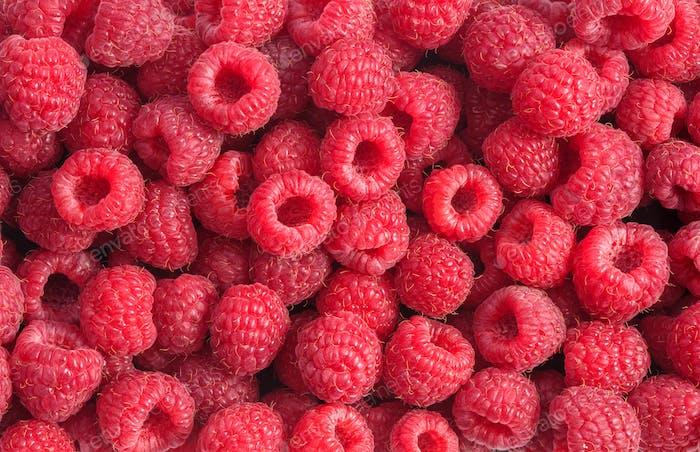 Raspberry background