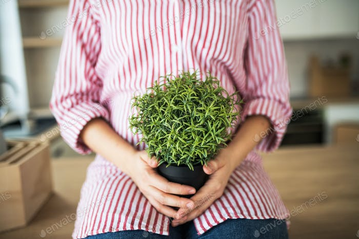 A midsection of young woman with plant moving in new home.